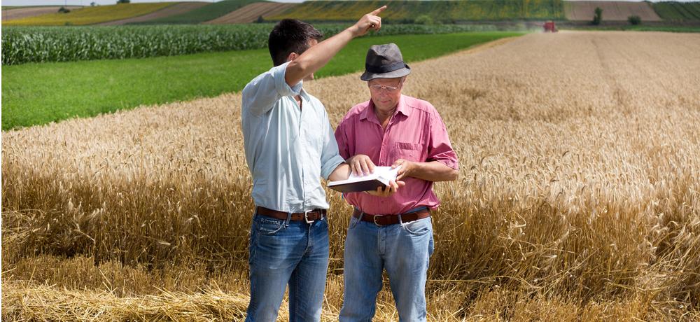 кредит на развитие сельского хозяйства