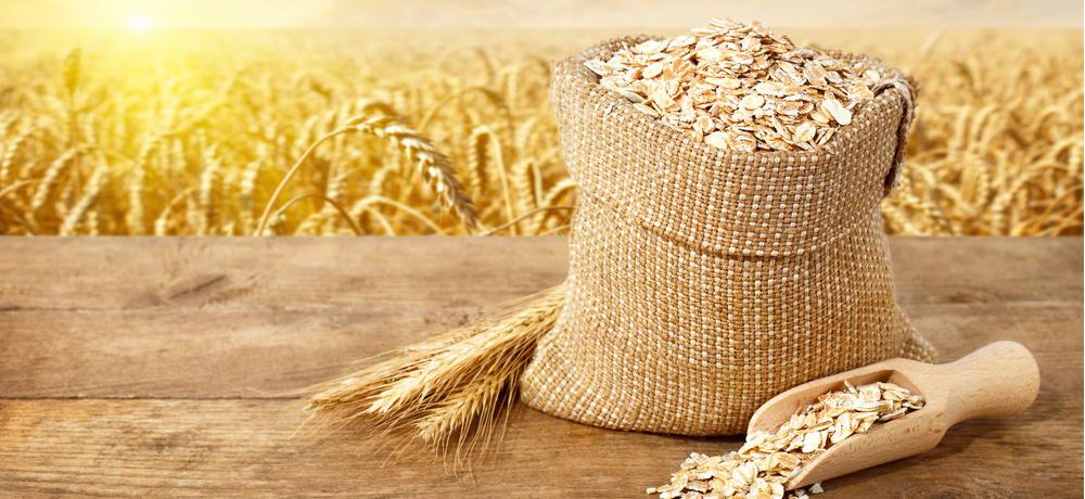 рынок зерна в Украине