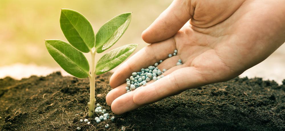 средств защиты растений