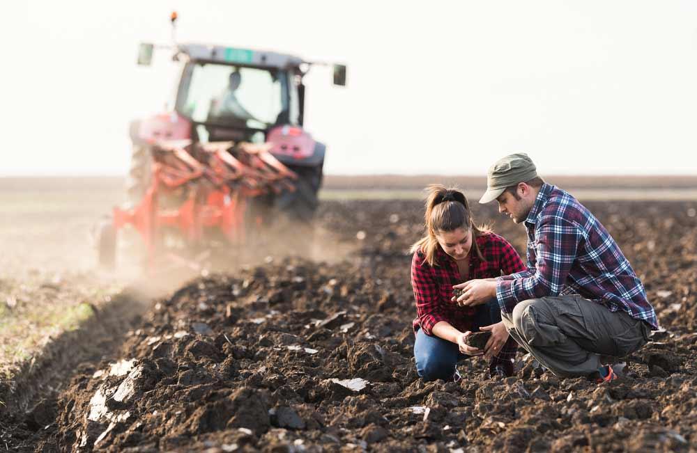 Инвестиции и кредитование в агробизнесе