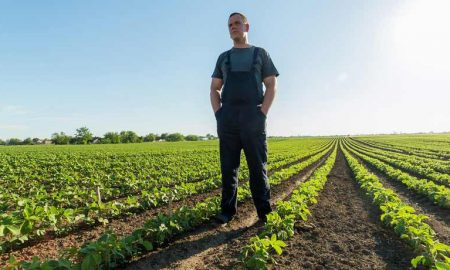 как аграрии взяли 4 миллиарда