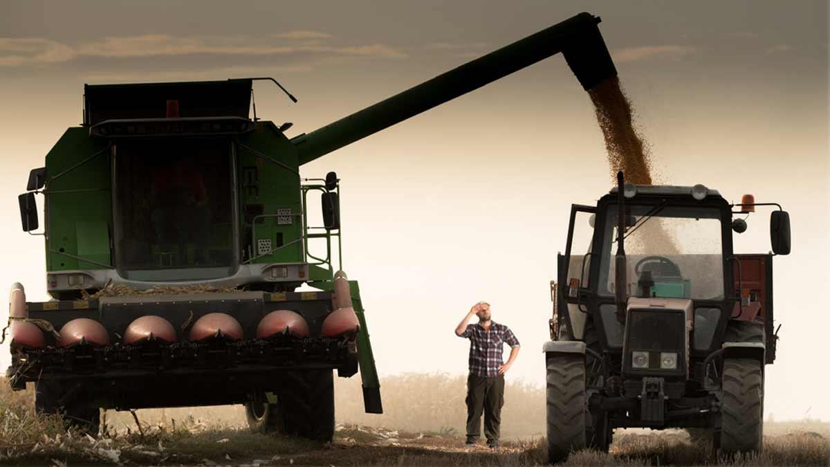 кредитование в агробизнесе