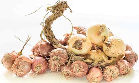 производство органических продуктов