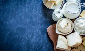 развитие молочного бизнеса в Украине