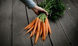 цена на морковь