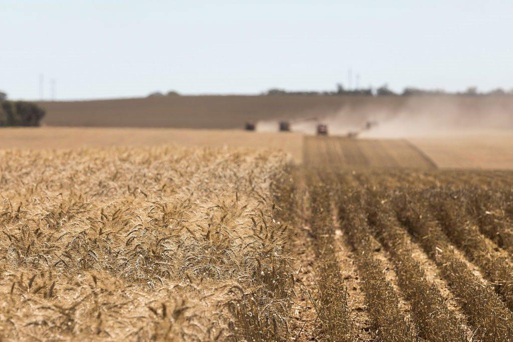 земельная реформа и государство