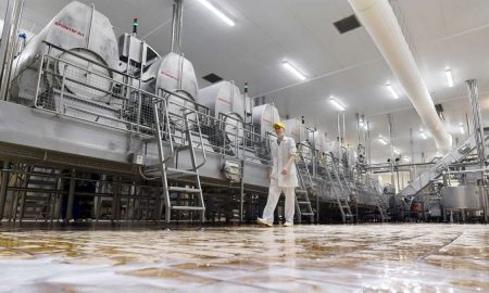 Производство молока в Украине