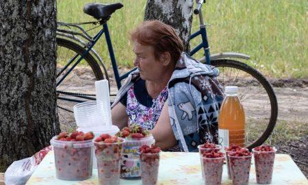 Объединение ягодников в кооперативы