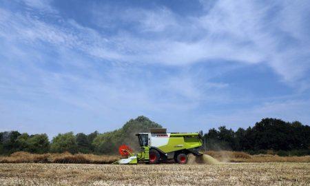 зерновые в украине