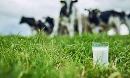 молоко в украине