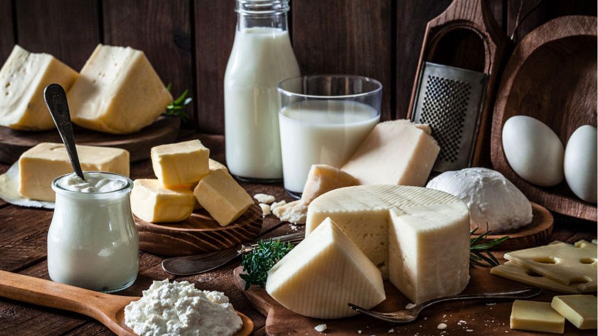 Украина в августе увеличила экспорт молочных продуктов