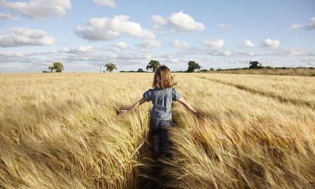 Мировые цены на зерновые
