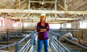 эффективность в животноводстве