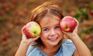 прогноз урожая яблок в Европе