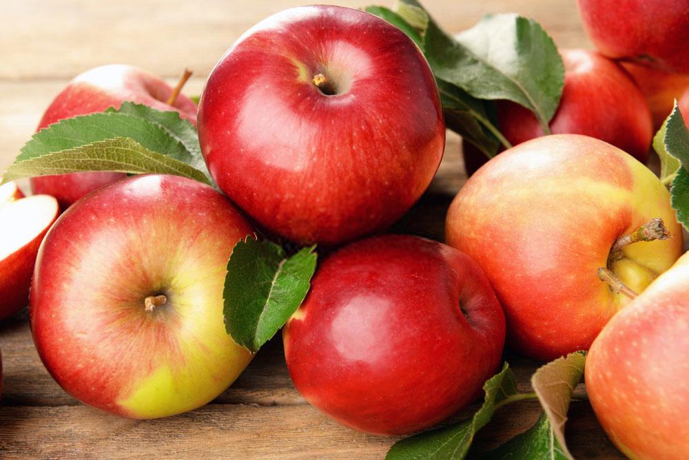 Прогноз урожая яблоки
