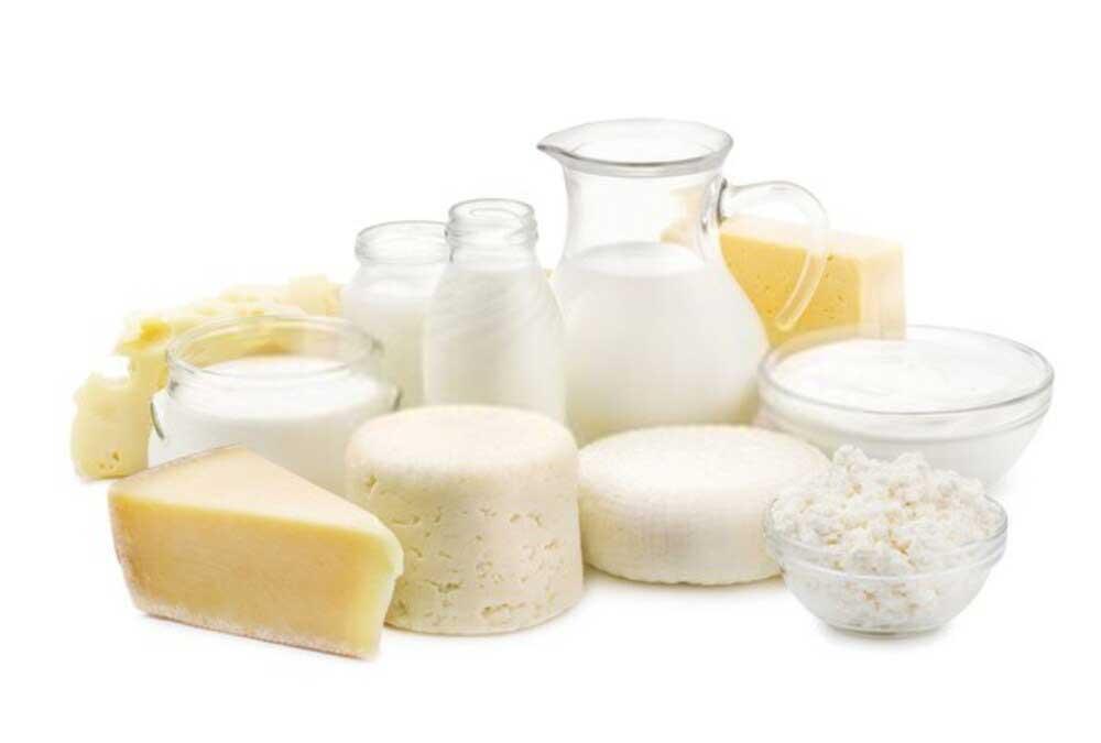 молочные продукты в школе